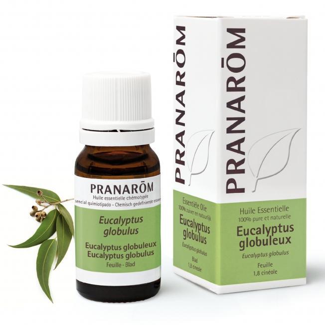 Pranarom – BIO Eterično olje Evkalipt globulus (Eucalyptus globulus), 10 mL